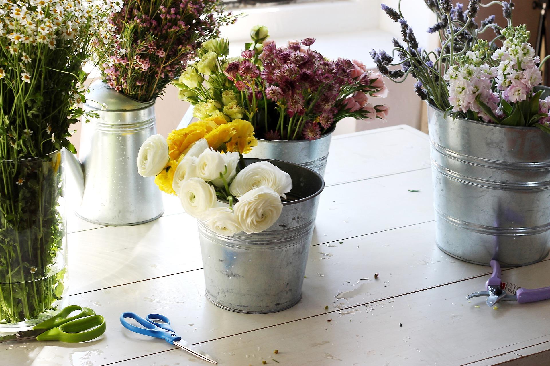 Votre fleuriste carcassonne et limoux fleurs et nuances for Fleuristes et fleurs
