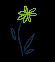 Des fleurs rythmées aux fils des saisons